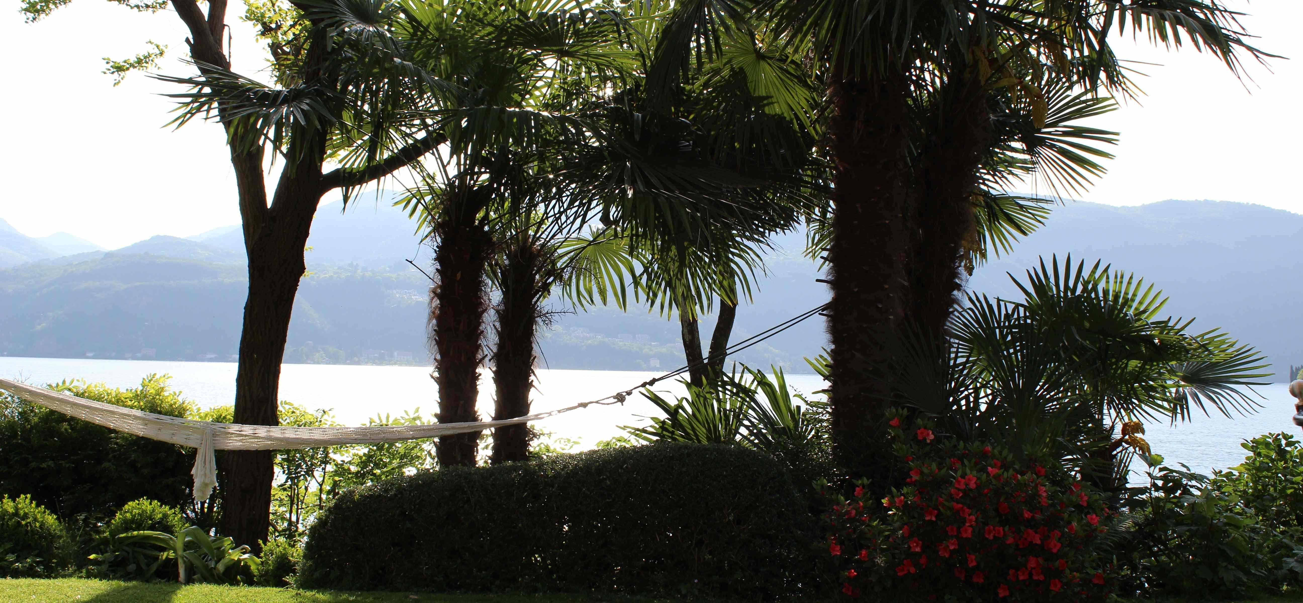 oder träumen ein bisschen in der Hängematte zwischen den Palmen.
